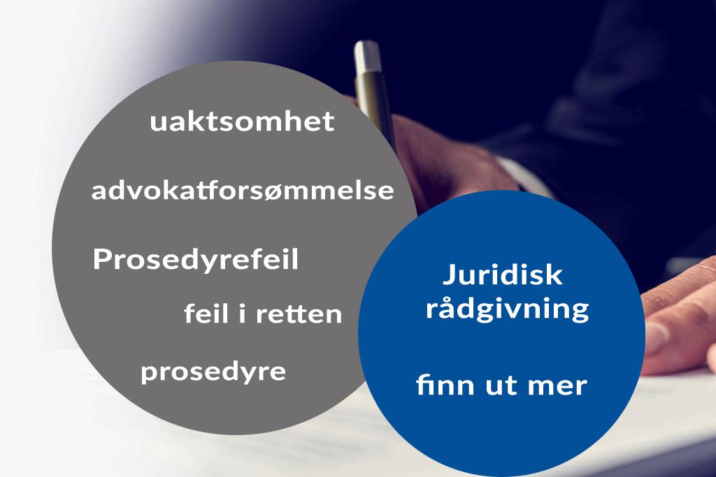 Prosedyre. Advokat Danielsen & Co. Per Danielsen. Advokat i Oslo.